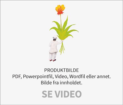 video_dummy
